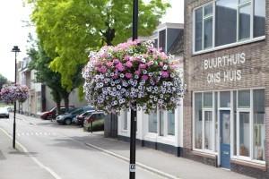 woonwijk hanging baskets florabasket