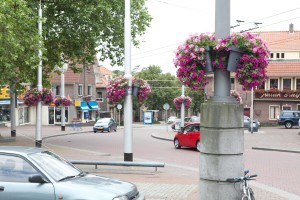 winkelcentrum hanging baskets florabasket